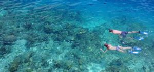 Snorkling, Vacation packages